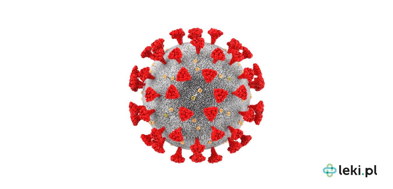 Przeciwciało monoklonalne, bamlanivimab, stało się nadzieją do walki z koronawirusem? Jak działa ten lek? (fot. Shutterstock)