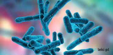 Rola probiotyków w leczeniu nieswoistych chorób zapalnych jelit