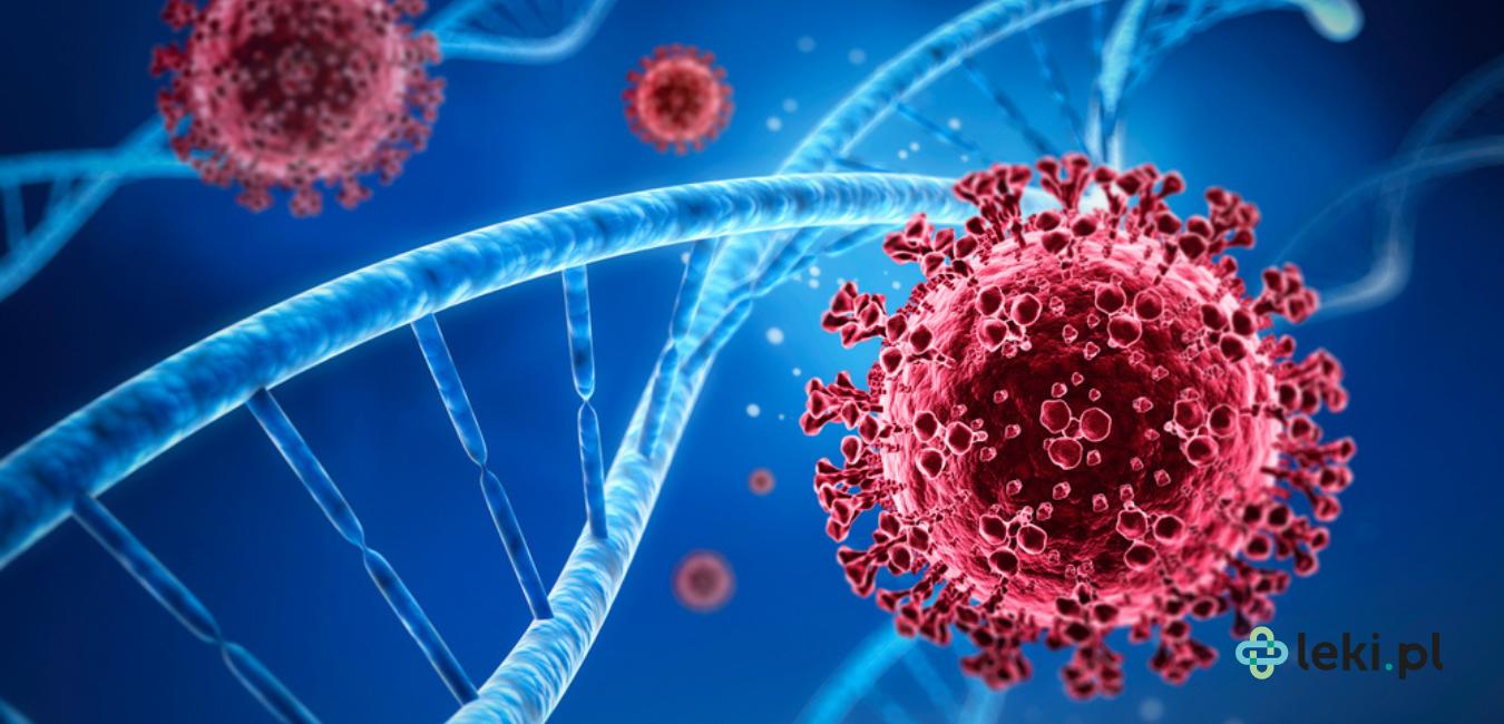 Pandemia SARS-CoV-2 rozwija się nieustannie. Z tego powodu pojawiają się nowe warianty koronawirusa. Warianty koronawirusa – charakterystyka i porównanie. (fot. Shutterstock)
