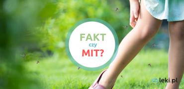 Ukąszenia owadów — 5 faktów i mitów!