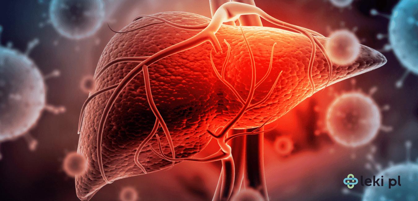 WZW to Wirusowe Zapalenie Wątroby, które dzieli się na 5 głównych typów. Poznaj objawy choroby i możliwe drogi zakażenia. (fot. Shutterstock)