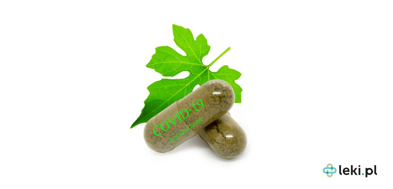 Okazuje się, że zioła mogą nam wiele zaoferować w kontekście COVID-19. Czy czeka nas więc wielki powrót do preparatów roślinnych? (fot. Shutterstock)