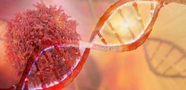 Nowość w leczeniu białaczki limfoblastycznej